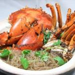XO Crab Vermicelli
